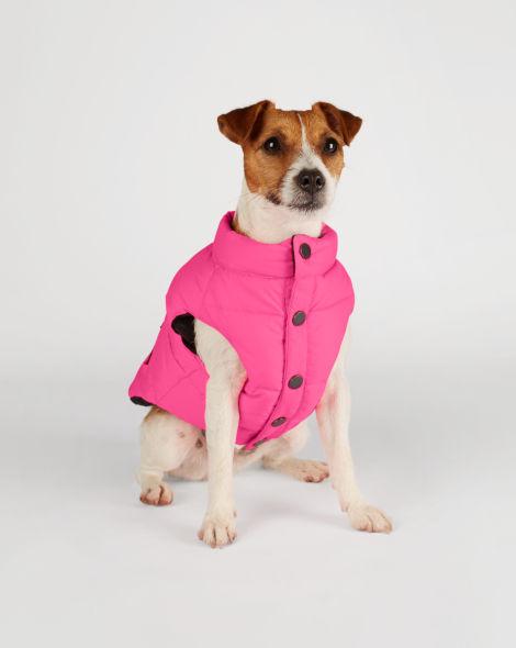 ralph lauren pink dog vest