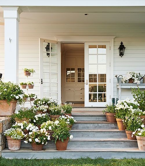 design darling | terracotta pots white flowers