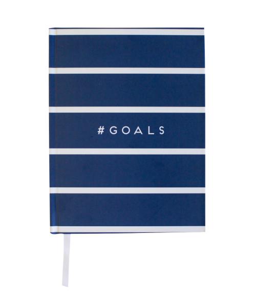 goals_notebook