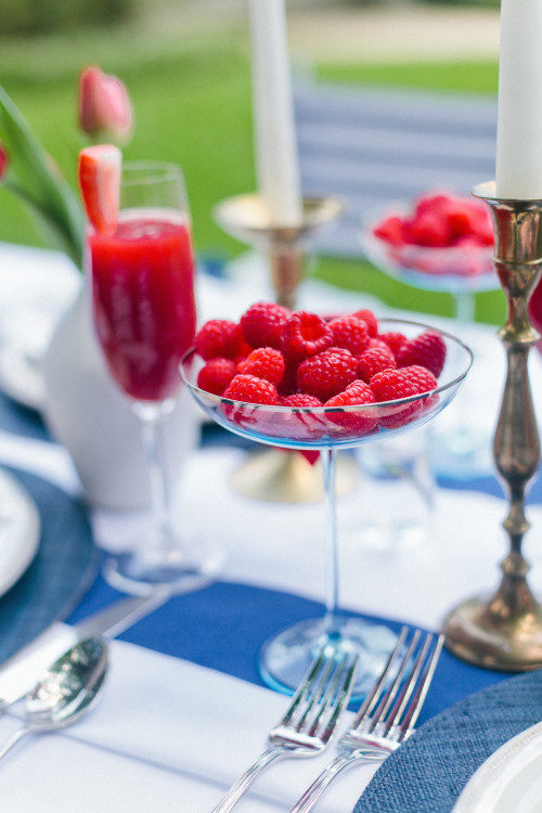 design-darling-fourth-of-july-raspberry-coupes-500x750