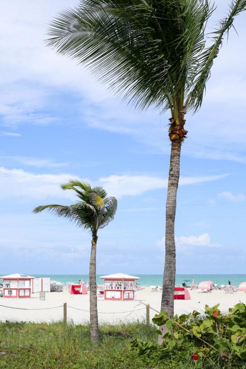 sls hotel south beach miami