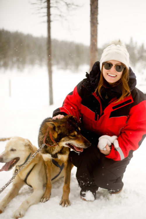 design darling dog sledding in finland