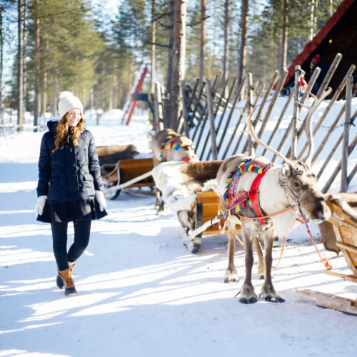 design darling finland reindeer safari