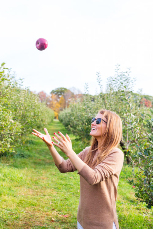 design darling apple picking