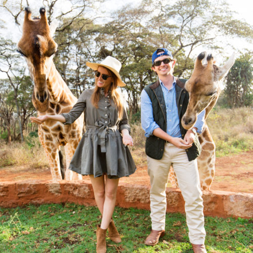 design darling honeymoon giraffes in kenya