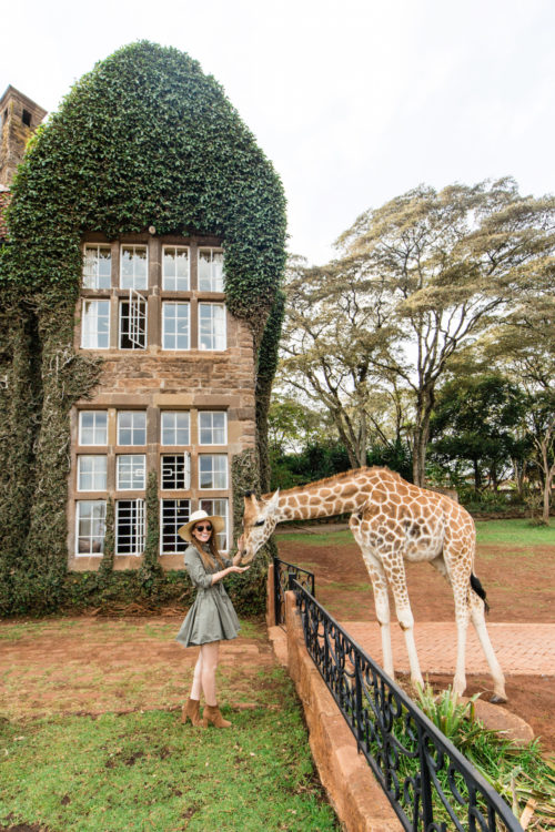 giraffe manor on design darling