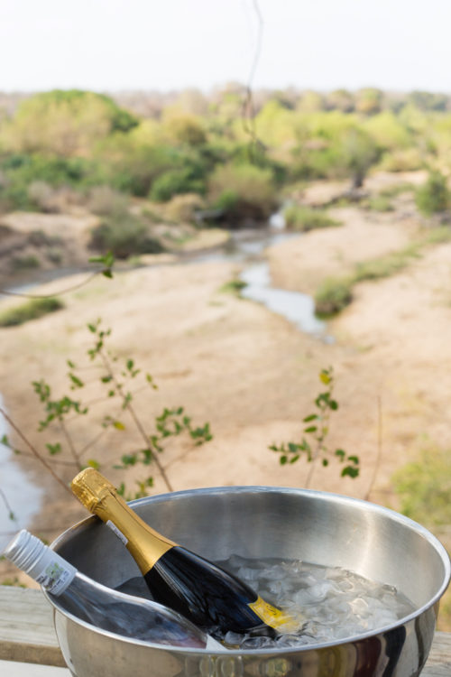londolozi honeymoon picnic