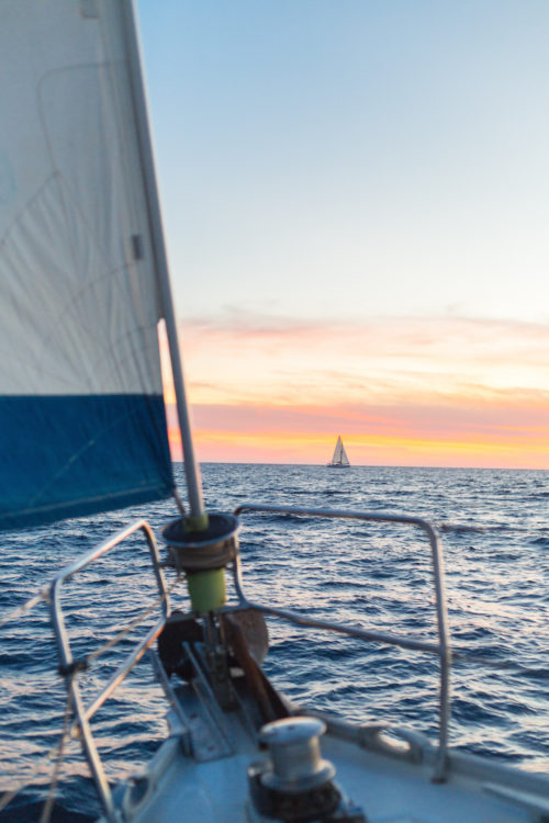 sunset sail cabo