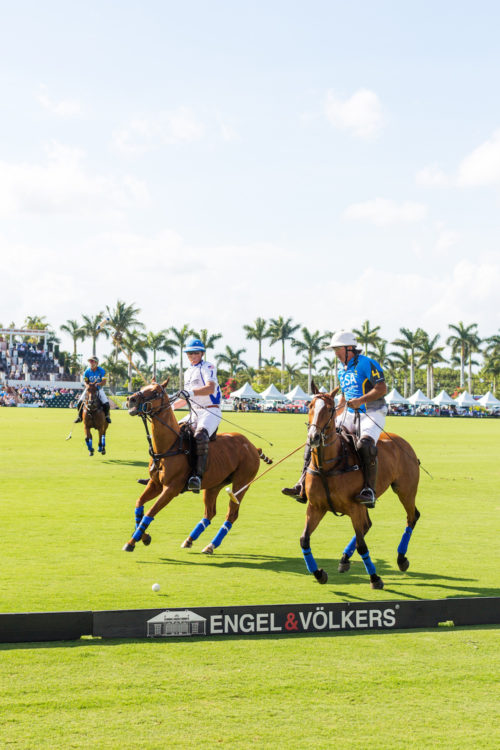 design darling palm beach polo match
