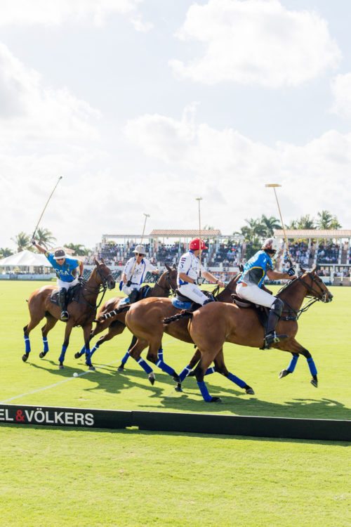 design darling polo match in palm beach
