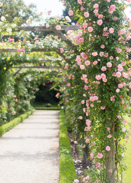parc de bagatelle paris rose garden on design darling
