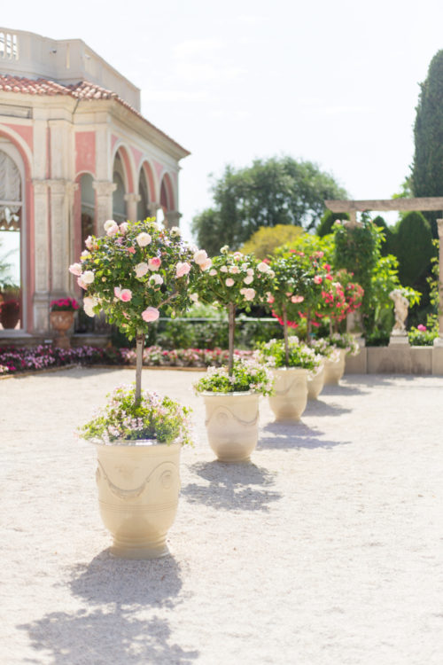 villa et jardins ephrussi de rothschild roses on design darling